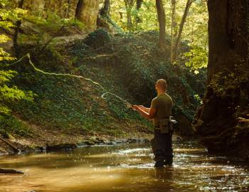 Fly Fishing in Gatlinburg