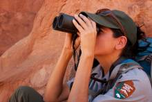 National Park Service Ranger Looking Through Binoculars