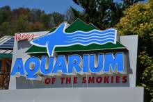 Ripley's Aquarium in the Smokies Sign