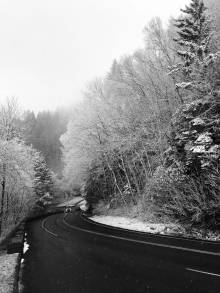 Snowy Road with Forest Landscape